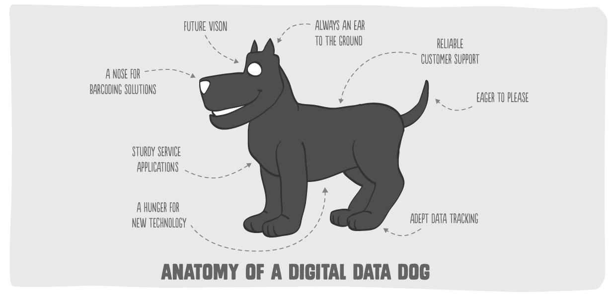 AboutUs_DigitalDataDogAnatomy | Big Inja - The Digital Data Dog