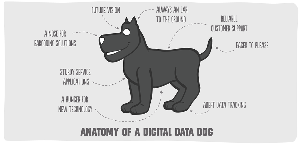 Old_About | Big Inja - The Digital Data Dog