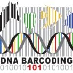 DNA-Barcode