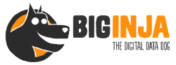 Big Inja Logo Big Inja Fixed Asset Tracking, Stock Control, CRM