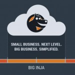 Big Inja Enterprise Consultant Platform