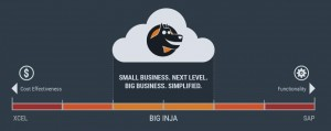 Big Inja Enterprise Consultant Platform - Copy