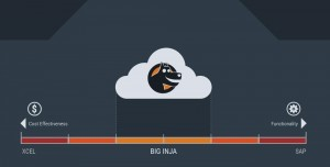 Big-Inja-Enterprise-Consultant-Platform-Header