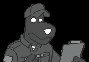 Portfolio_Security-Check