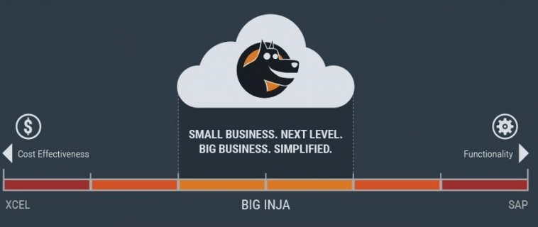 Infographic: Infinitely Expandable Organic Business System